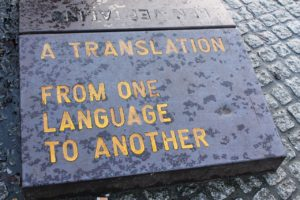 profesjonalne tłumaczenia językowe