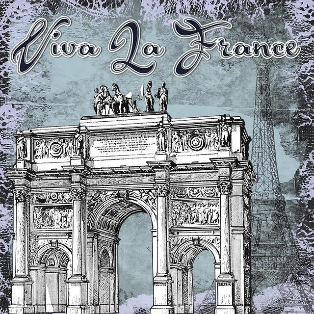 Tłumaczenia z języka francuskiego i tłumaczenia przysięgłe z języka francuskiego. Język francuski jest piękny